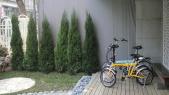群景單車工作室+庭園下午茶