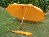 頂天洋傘公司