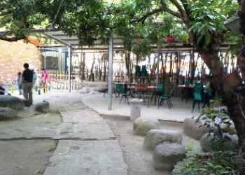 竹蜻蜓健康休閒庭園簡介圖3
