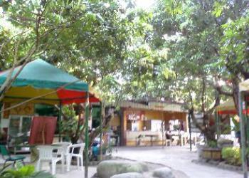 竹蜻蜓健康休閒庭園簡介圖1