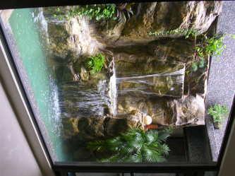 綠大山水造景景觀簡介圖2