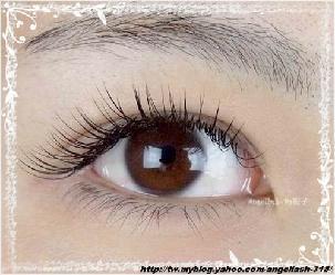 台南種睫毛、植睫毛電眼美人 3D嫁接睫毛 天使睫 美睫館簡介圖1