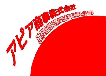 雅陛亞國際商務有限公司簡介圖1