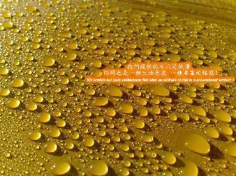 LA VIE 美容工藝(桃園頂級汽車美容/汽車鍍膜)簡介圖1