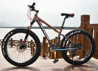 阿諾電動自行車簡介圖2