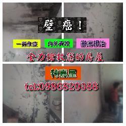 特佳屋蜘蛛人外牆防水工程簡介圖3
