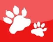 【認養狗狗貓咪app】