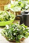 野菜無限量供應