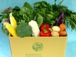 有機蔬菜宅配 - 蔬菜組