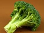 有機蔬菜 - 青花椰菜