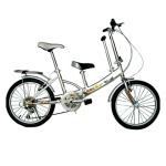 腳踏親子車
