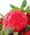 《大湖》鮮紅大草莓(1組3盒)